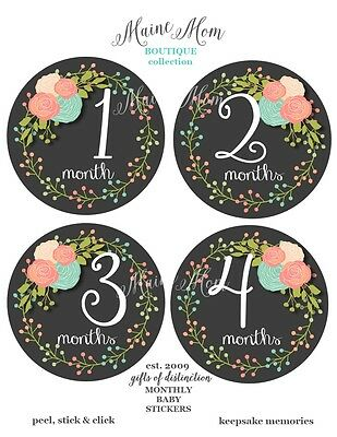 SALE Monthly Baby Girl Stickers Floral Month Stickers Baby Gift Mint Coral