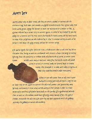 Book of Shadows Spell Pages ** Lucky Acorn ** Wicca Witchcraft BOS