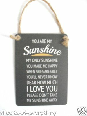 You Are My Sunshine I Love You - Sentimental Mini Metal Hanging Sign