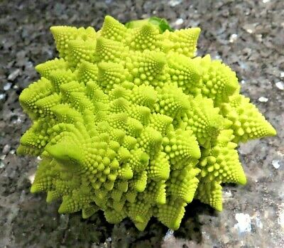 ROMANESCO 100+ seeds Cauliflower Broccoli Romanesque fractal vegetable garden