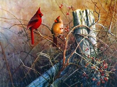"""Frankly Scarlet By Scott Zoellick Cardinal  Print  Image Size 8"""" x 6"""""""