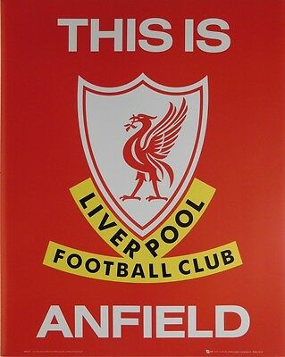 LIVERPOOL FC POSTER (40x50cm) ANFIELD NEW LICENSED ART