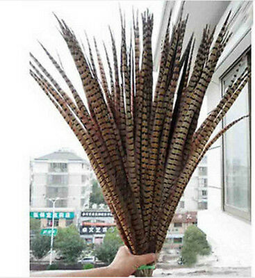 Wholesale 10-100PCS 30-95cm/12-38nches Natural Pheasant Tail  Feathers  U PICK
