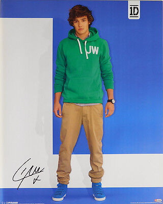(LAMINATED) One Direction POSTER (40x50cm) Liam New Licensed Art