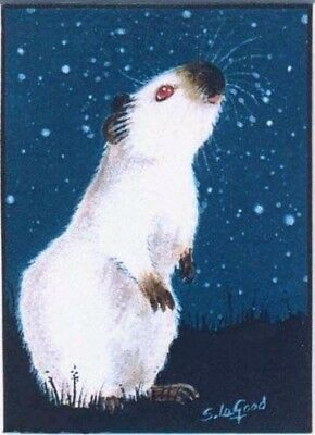 Guinea Pig ACEO art print from original painting Himalayan by Suzanne Le Good