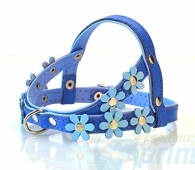 Harness Decorated With Flowers Pettorina In Pelle Decorata Con Fiori Vari Colori