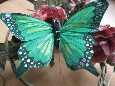 Authentic Green Feather Fantail Butterfly - 10.0cm wingspan