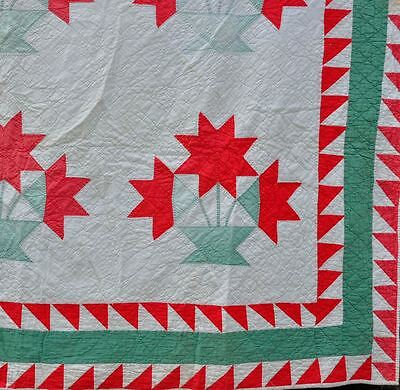 1930s - STUNNING CAROLINA LILY or PEONY VINTAGE ANTIQUE QUILT – SAWTOOTH BORDER!