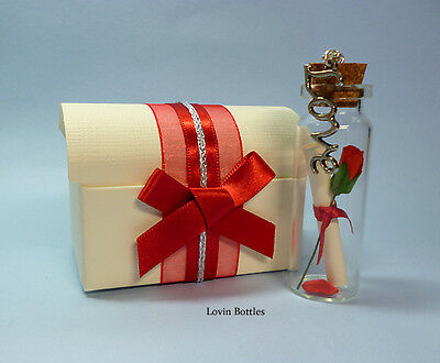Valentines Day Romantic Message In A Bottle Gift