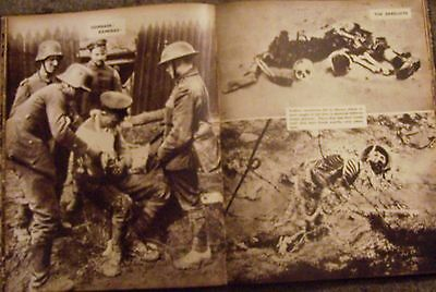 War WWI Allies BEF Army Britain Germany Battle Front Death Casualties Veterans