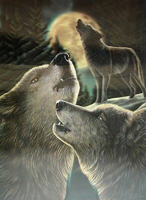 NEW * WOLF SONG * LISA PARKER WOLF 3d FANTASY ART PRINT PICTURE  39CM
