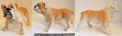Castagna Bulldog Figure! New, Mint in Box! Lots of Detail LOW SHIPPING!