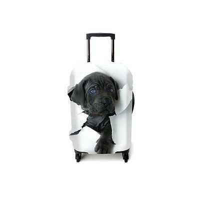 Suitcase case Doggy step brand Luggitas best protection for baggage