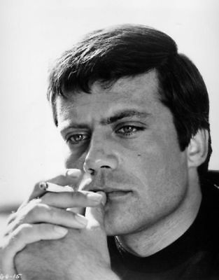 Oliver Reed Fantastic New 10x8 Photo