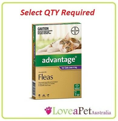 Advantage Flea Treatment For Large Cats Over 4kg SELECT QTY REQUIRED...SAVE $$$$