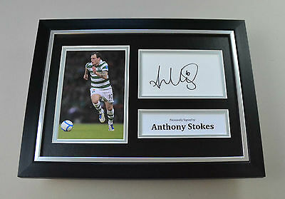 Anthony Stokes Signed A4 Photo Framed Celtic Autograph Display Memorabilia + COA