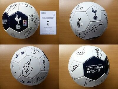 2013-14 Tottenham Squad Signed Football - Official COA (6665)