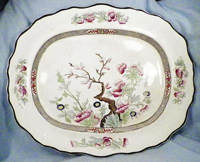 Antique Indian Tree Platter Burgess & Leigh Pottery Scalloped Serving Oval Huge