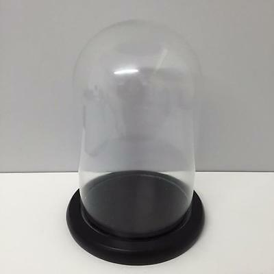New GLASS DOME CLOCHE BELL JAR 32CM high Black Wooden Base Home Display Gift