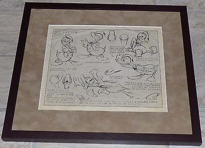 Walt Disney Donald Duck Framed Original 1937 Production Model Sheet