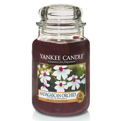 Yankee Candle Madagascan Orchid Grosses Glas 623 g
