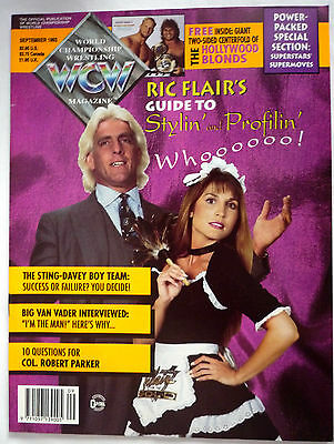 Wcw Magazine Sept 1993 / Doublesided Hollywood Blonds Poster
