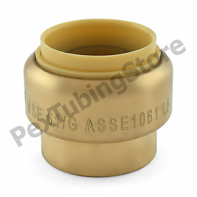 """1"""" Sharkbite Style (Push-Fit) Push to Connect Lead-Free Brass Plug (Cap)"""