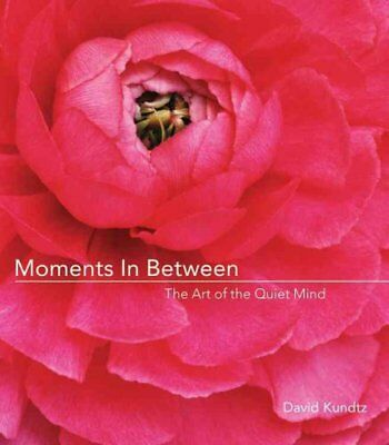 Moments in Between: The Art of the Quiet Mind by David J. Kundtz (Paperback,...