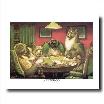 CATS PLAYING POKER A3 ART PRINT PHOTO POSTER AMK3016