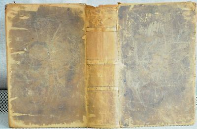 1887 Gray's Anatomy, Descriptive and Surgical Henry New Amer. Ed. from English
