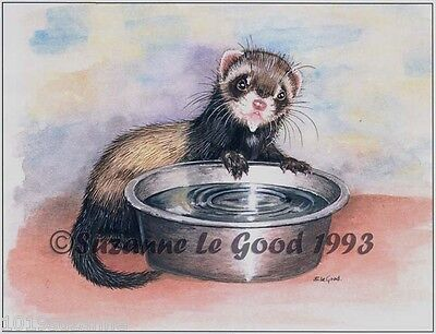 Signed Unmounted Ferret Polecat Kit Painting Print From Original Suzanne Le Good