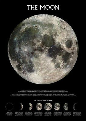 PHASES OF THE MOON POSTER (91x61cm)  NEW WALL ART