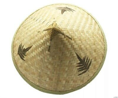 Chinese Straw Hat Asian Pool Party Costume Coolie Farmers Cina Vietnam Dress Up
