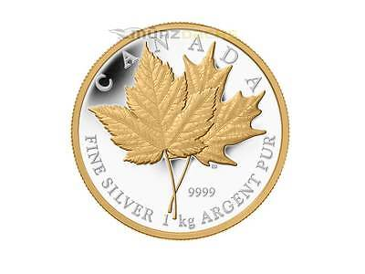 250 $ Dollar Maple Leaf Kanada Canada 2013 1 kg Kilo Silber PP Gold gilded