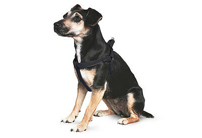 Ancol Padded Dog Harness Large