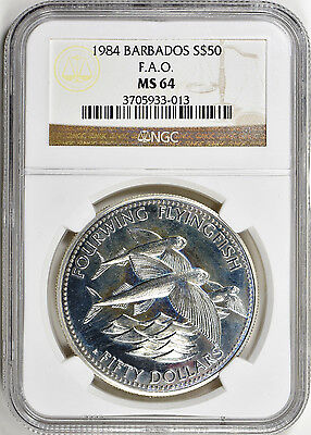 Barbados 1984 F.a.o. S$50 Ngc Ms 64 - Flying Fish Silver Coin - Great Price