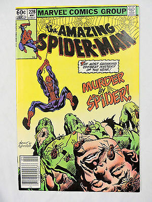 THE AMAZING SPIDER-MAN #228 Marvel Comic Book (VF+)