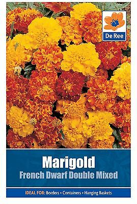 De Ree Marigold French Dwarf Double - Flower Seeds Pack of 55