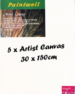 """5pcs Paintwell Artist Stretched Canvas 12x60"""" Heavy Duty 38mm Thick - SCS-1260B"""