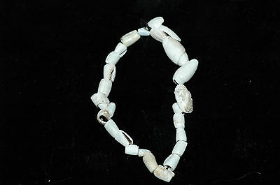 Ancient Hohokam Drilled Shell Trade Bracelet  800-1200 AD  NAA-138