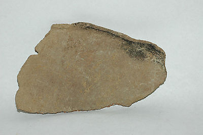 Large Pre-historic pottery shard Hohokam or Salado 800-1400AD no reserve