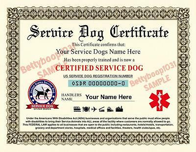 SERVICE DOG CERTIFICATE ***Custom With Your Dogs Name & Handlers Name*** pet ADA
