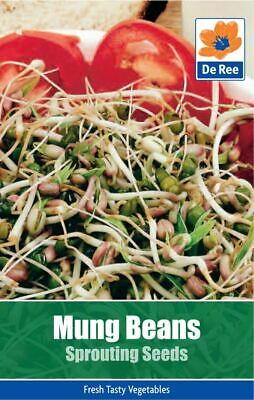De Ree Mung Beans Sprouting Seeds - Vegetable Seeds Pack of 110
