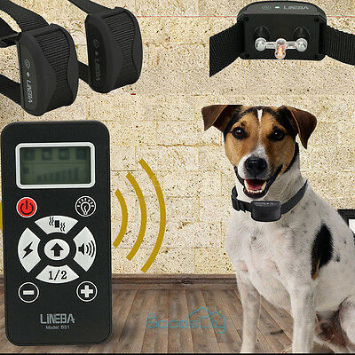 Rechargeable Remote Dog Training Collar 800Yard Shock Collar For 2 Dogs US