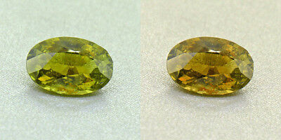 Untreated Ceylon Olive Green Alexandrite  2.24 Ct. Certified (00419/FK8-3170315)