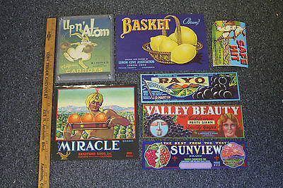 7 Vintage Produce Labels Never Used Lot Acrylic Display Various Sizes B