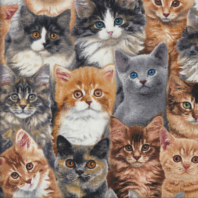 Tabby Ginger Grey Cats Kittens Animal Quilting Fabric FQ or Metre *New*