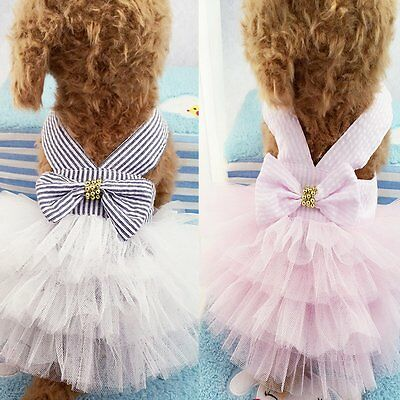 Small Dog Clothes Pet Dog Puppy Lace Tutu Dress Lace Skirt Cat Princess Apparel