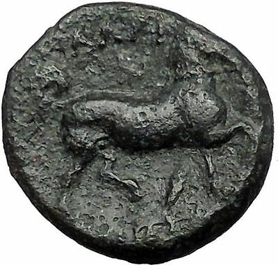 LARISSA in THESSALY 350BC NYMPH Horse Authentic Ancient Greek Coin i55341