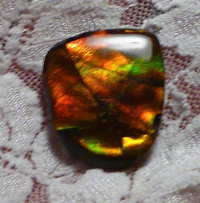 21 carats! Red & Green Change AMMOLITE Freeform Finished Gemstone 25.5x21m